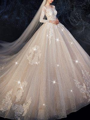 Glitzerndes Prinzessinnenbrautkleid und Schleier